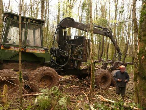 Timberjack FMG ÖSA 280 eladó fotó