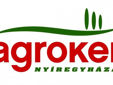 FOGASKERÉK DRAGONE K2 /721.516.00 HAJTÓMŰBE/ fotó