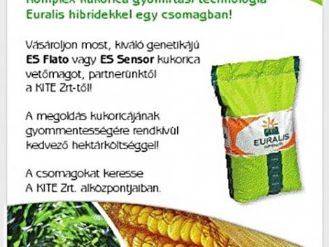 Komplex kukorica gyomirtási technológia - Euralis hibridekkel egy csomagban!
