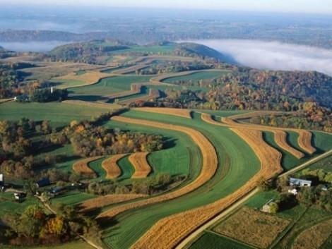 Az EU vidékfejlesztési politikájáról és a vidék kitörési pontjairól is ír a friss agrárökonómiai folyóirat