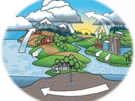 Energianövények termesztése és a klímaváltozás