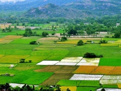 India: a mezőgazdasági gépgyártás jövője?