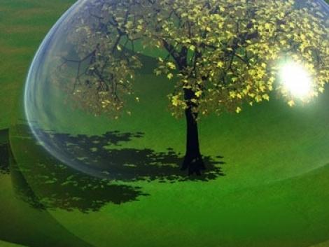 A biodiverzitás fontossága