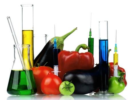 A gazdák felelőssége a hazai GMO moratórium betartása, betartatása