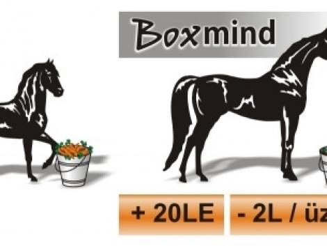 Fogyasztáscsökkenés és teljesítménynövelés - Boxmind, új technológia a motorjának