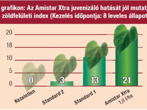 Amistar Xtra: Extra termés - Xtra termék