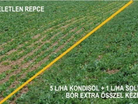 Növénykondicionálás és lombtrágyázás felsőfokon