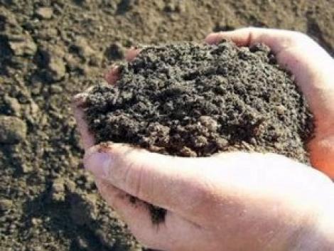 Javítsa talajának termelő értékét!