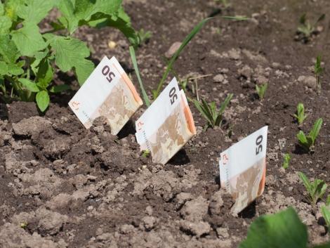 OTP: Új kedvezményeket kínál a gazdáknak a növekedési hitelprogram