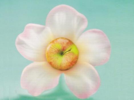 DuPont™ Fontelis® gombaölő szer: Új korszak az almatermesztésben (+Videó)