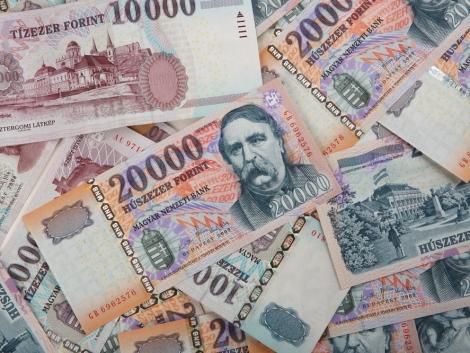 Íme az 500 legjobban támogatott magyar agrárcég