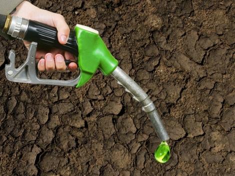 Mennyi idő alatt térül meg a bioüzemanyag?