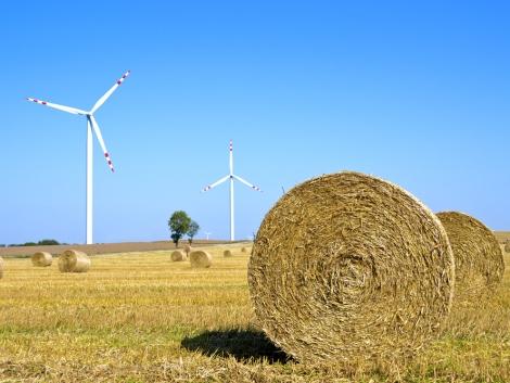Tele vagyunk lehetőséggel, már ami a bioenergiát illeti