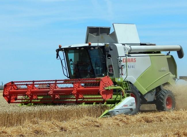 Így állítsuk be a kombájn vágóasztalát gabonaaratáskor!