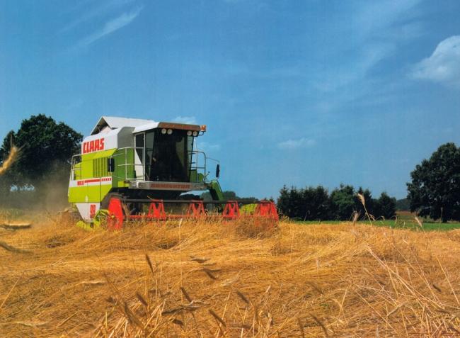 Hogyan csökkentsük a veszteségeket a megdőlt gabona betakarításakor?