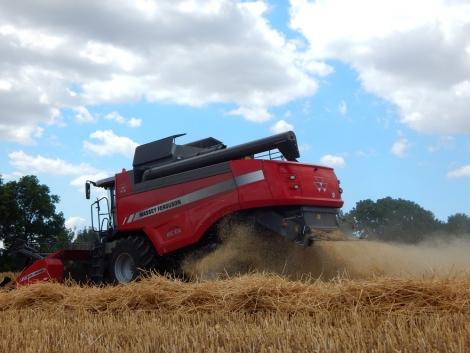 Bevetésen a gabonabetakarítás és a vetés gépei