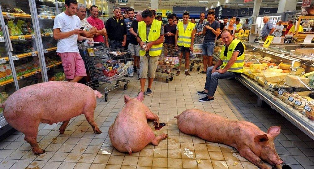 sertés-tüntetés Franciaországban