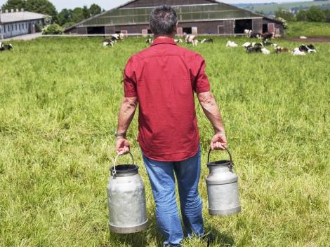 Banki segítséggel ösztönöznék a hazai tejfogyasztást