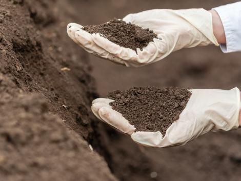 Mérgek a talajban