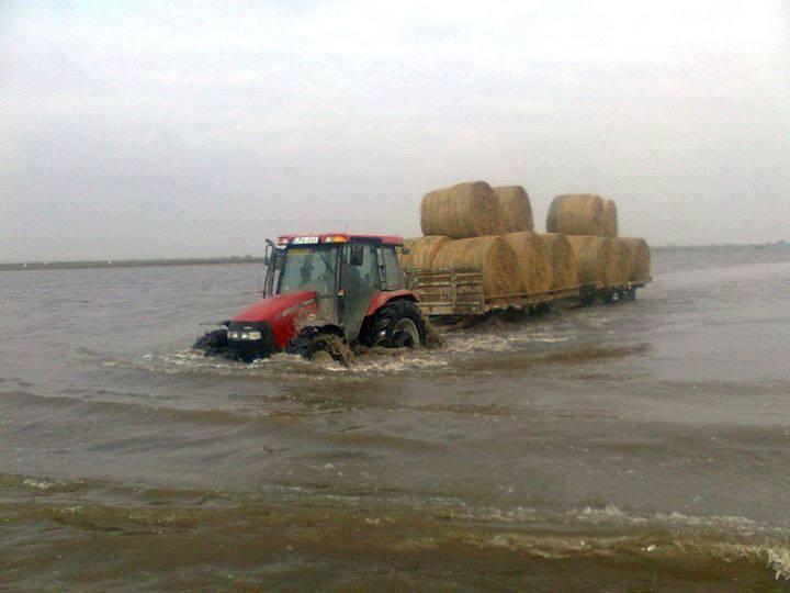 mezőgazdaság- optimizmus