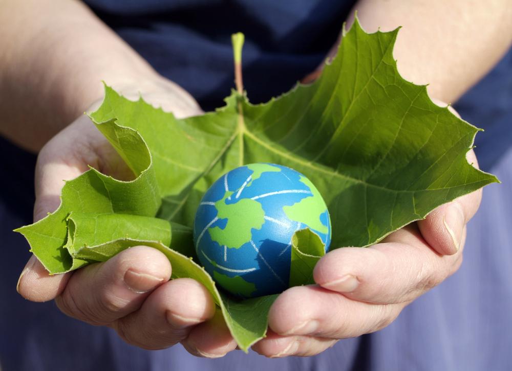 Újraindul a Zöld Ipari Innováció program