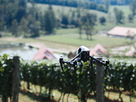 A drónok komoly gazdasági kártól óvhatják meg a mezőgazdaságot