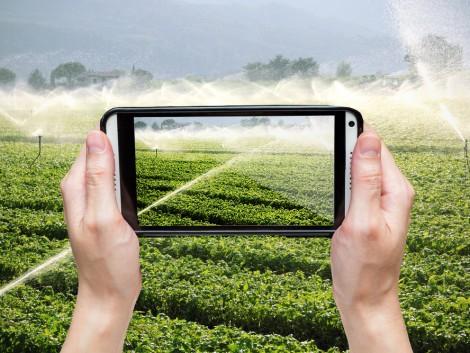 Új mobil applikáció az élelmiszer-ellátás szolgálatában