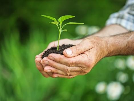 337 millió eurós támogatás környezetvédelemre