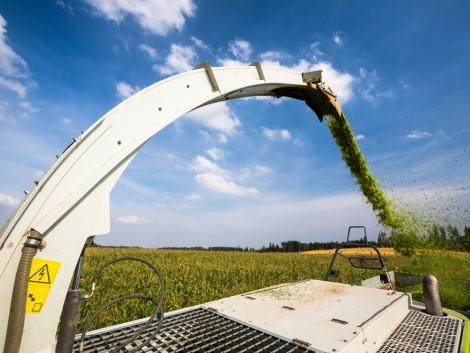 Extenzív vagy intenzív legyen a gazdálkodás?