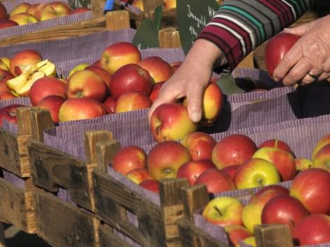 Oroszország köszöni szépen, de továbbra sem kér európai gyümölcsöt