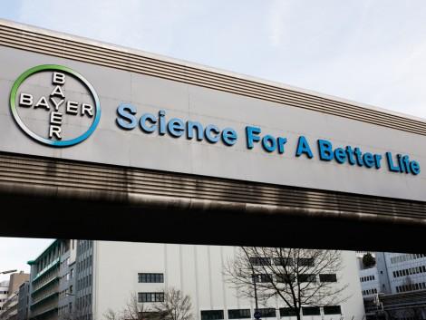 A Bayer nem adja fel – többet is fizetne a Monsantóért