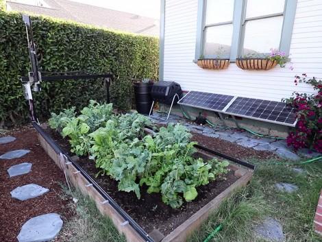 A FarmRobot pontosan ismeri a növények igényeit