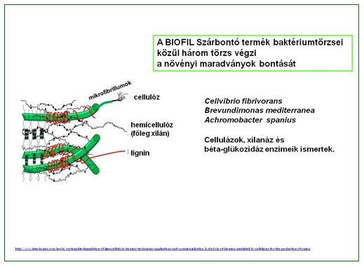 biofil
