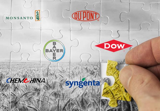 Ez a hat óriásvállalat éppen azon van, hogy bekebelezze az agrárpiacot