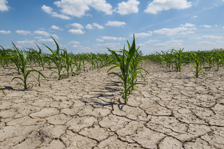 klímavátozás
