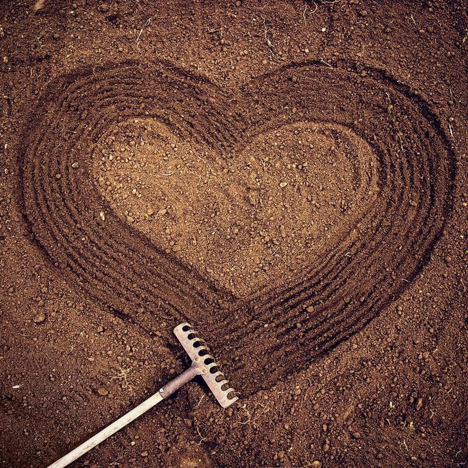 szívvel-lélekkel