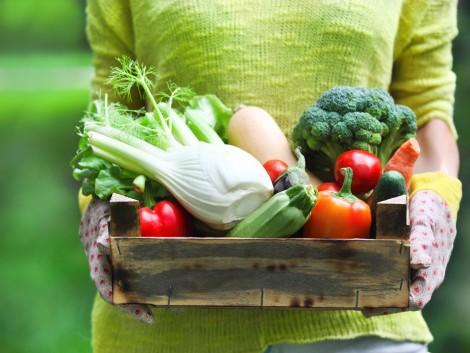 Tudja, mivel járnak a foszforgondok a zöldségtermesztésben?