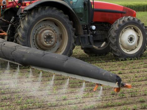 Az EU mezőgazdasági biztosa kiállt a glifozát mellett