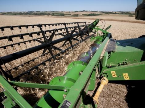 Csak új gabonastratégiával vehetjük fel a versenyt a nemzetközi piacon