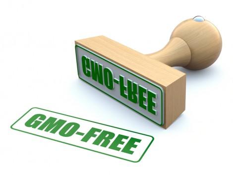 Önálló, GMO ellenes szervezet alakult Németországban