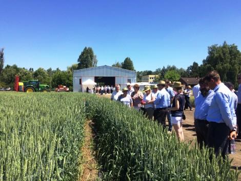 Miért érdemes innovatívan termelniük a magyar gazdálkodóknak?