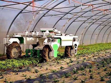 A robotok már a kertben vannak (+Videó)
