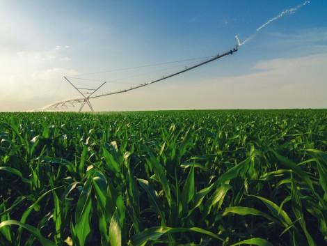 Változó környezetben a mezőgazdaság