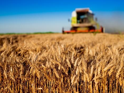 Nem a megfelelő célokra fordítják az agrártámogatásokat