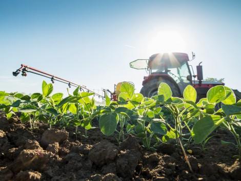 2018-tól életbe lép a növényvédőszer-tilalom a zöldítésben