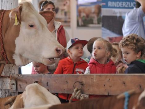 mezőgazdasági élet randi 13 éves csatlakozási oldalak