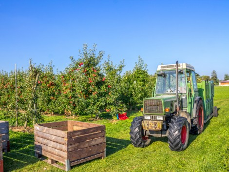Mi a lengyel mezőgazdaság sikerének titka?
