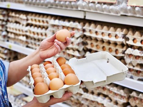 A tojásbotrány rávilágított az EU-s riasztási rendszer hiányosságaira