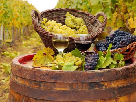 Kevés, de jó bor lesz idén Franciaországban