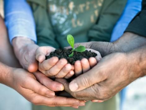 Kérdések és válaszok a termőföldöröklésről